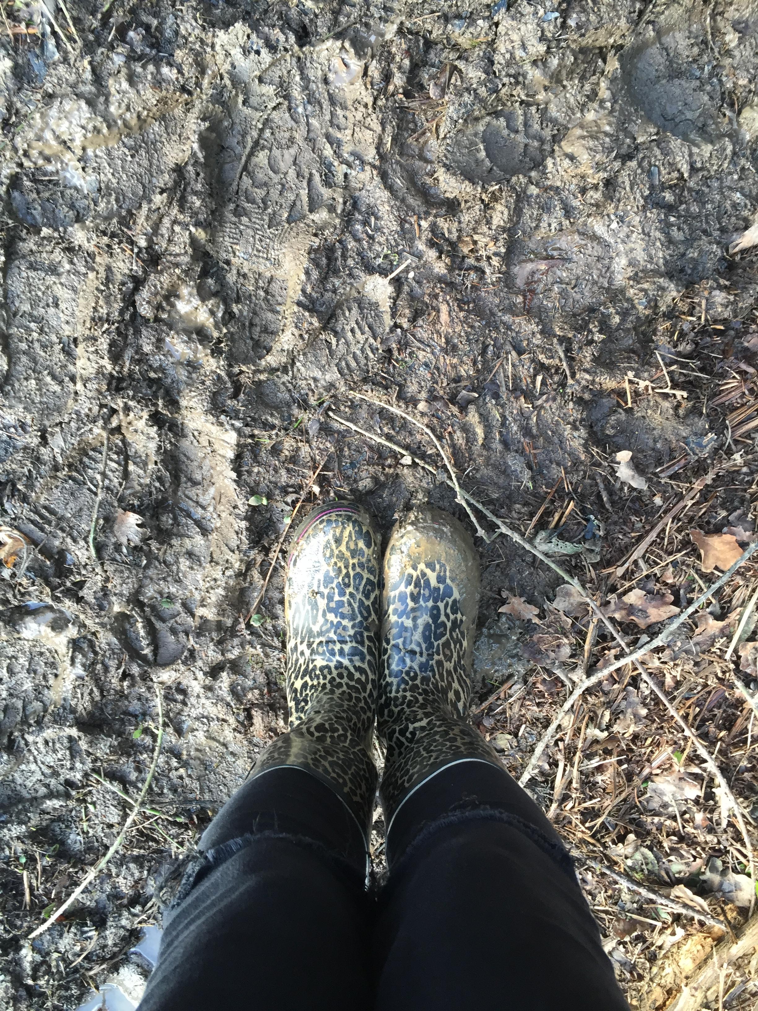 muddy_wellies